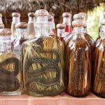 ムカデから作られるムカデ油の効能!その作り方は?
